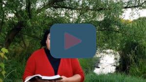 Message - Pentecost 2 Gospel and Sermon; Matthew 9:35 - 10:23